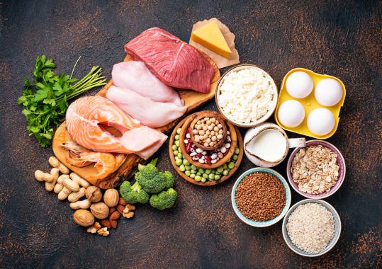 dieta proteinada-logroño